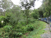 Photo Essay: Nilgiri Mountain Railway: Train from Ooty Coonor