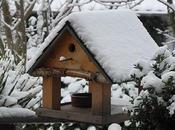 Prepare Your Garden Winter