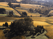 Breaking News: Family Coppola Acquires Vista Hills Vineyard Oregon's Dundee