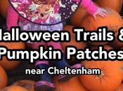 Halloween Trails Pumpkin Patches Near Cheltenham 2018