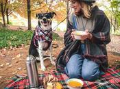Curry Pumpkin Soup Fall Picnic (Gluten Free, Vegan Option)