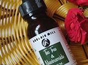 Greenie Mill Tree Niacinamide Serum Review