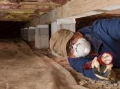 Your Unsealed Crawl Space Costing Money!