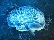 Ways Ketogenic Diet Improves Brain Function