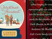 Book Review: Christmas Accident #FestiveReads