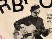 ADVENT CALENDAR: Orbison Pretty Paper