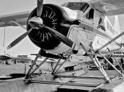 DeHavilland Beaver U-6A