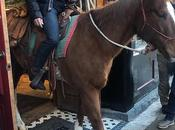 Amazon Jeff Bezos Knows Which Horse Ride