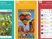 Best Color Identifier Apps (android/iPhone) 2019