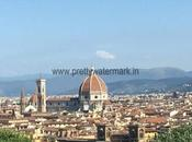 Read About Italy Trip-The Land Michelangelo, Roman Empire ,Wine Pizza