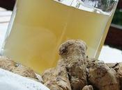Ginger Sirup #272