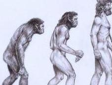 Evolutionary Psychology Best Explanation Behavior?