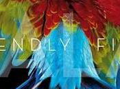Green Remixes Friendly Fires