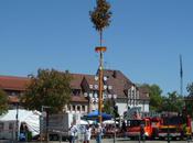 Maypole Celebrations Germany