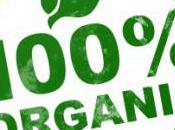 What's Great About Organic Foods?