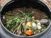 Composting Dummies