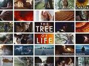 Tree Life (Terrence Malick, 2011)