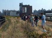 Cost Benefits High Line