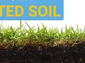 Loosen Compacted Soil Improve Your Lawn