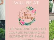 Central Park Birmingham Tiny Weddings Fair