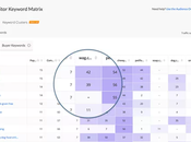 Best SERP Checker Tools In-depth Competitor Analysis