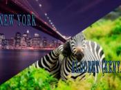 Error Fare: York Kenya Only $377