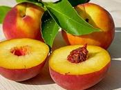 Dogs Peaches: Perfect Substitute Snack?
