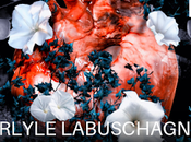 Tethered Carlyle Labuschagne