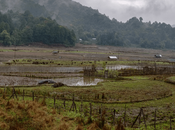 Ziro, Arunachal Pradesh: Paradise Amidst Dawn Mountains