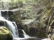 Welton Falls Minute Meditation