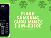 Flash Samsung b310 Phone Using B310e File