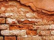 Need Damp Proof Your House?