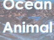 Ocean Animal Names Spanish