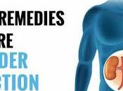 Bladder Infection Treatment Home Remedies Cure