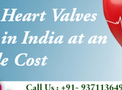 Your Heart Valves Replaced India Affordable Cost