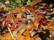 Reuse Compost Garden Waste?