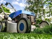 Avoid Lawn Care Injuries Know Before