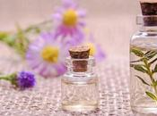 Natural Alternatives Perfumes Fragrances Girls Hate Heavy