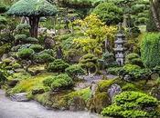 Landscaper Guide Plant Spacing