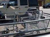 Shopping Buggy Corrals Make Think Kant