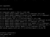 Install MySQL Debian Operating System
