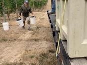 Latest Wine Business Monthly: Oregon 2019 Harvest Races