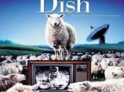 Neill Weekend Dish (2000)