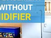 Humidity Your Basement Without Dehumidifier