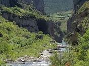 Natural Reserve Canyon Lumbier Navarra Spain