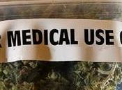 What Need Know About Medical Marijuana Philippines