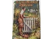Gate Marked Private (1928) Ethel Dell