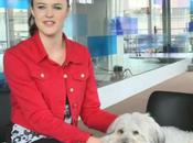 Britain's Talent Winners Ashleigh Pudsey Hollywood Stardom, Reports