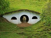 Lord Rings Movie Houses Sheep