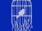 Indie Apparel Win: Bird Cage from Concrete Rocket!